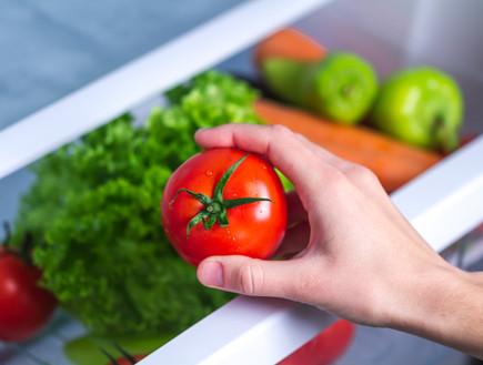 עגבניות במקרר (צילום: goffkein.pro, shutterstock)
