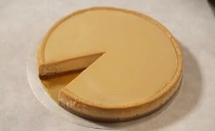 עוגת גבינה מגזינו (צילום: חי בלילה)