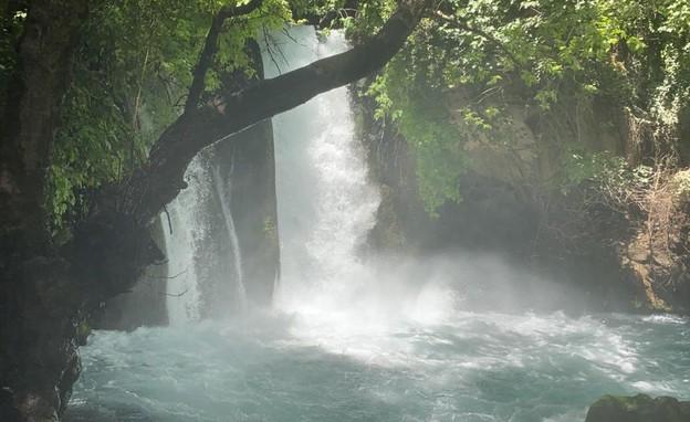 בניאס (צילום: ברק שחר)