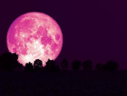 שדות תותים לנצח: היום בערב יופיע ירח תות