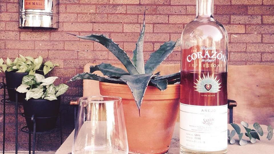 טקילה קוראסון (צילום: צילום מהאינסטגרם bourbon_peacock)