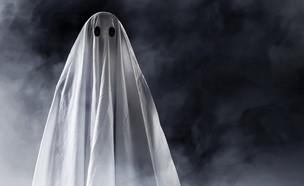 רוח רפאים  (צילום: צילום מסך מתוך ווטסאפ)