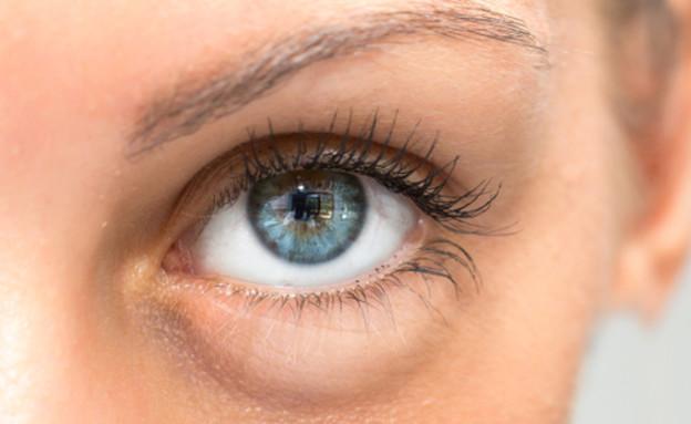 עיניים (צילום: Shutterstock)