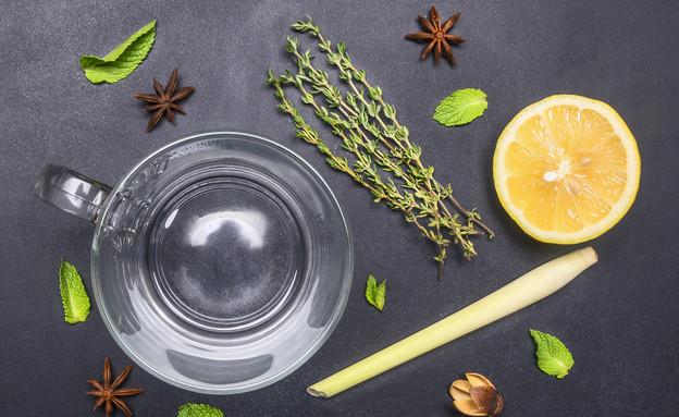 חליטת תה צמחים