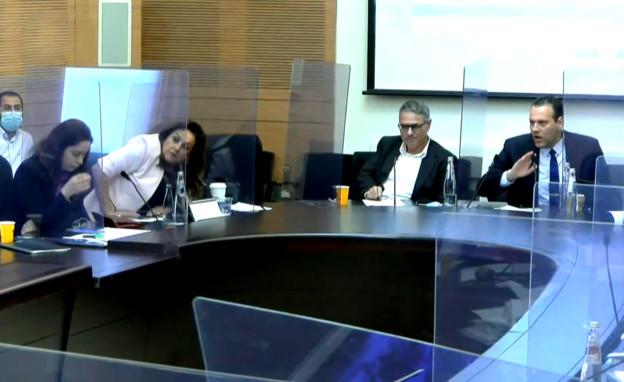 ועדת הכספים בכנסת (צילום: ערוץ הכנסת)