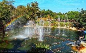 פארק אוטופיה (צילום: reemmphotography, אינסטגרם)