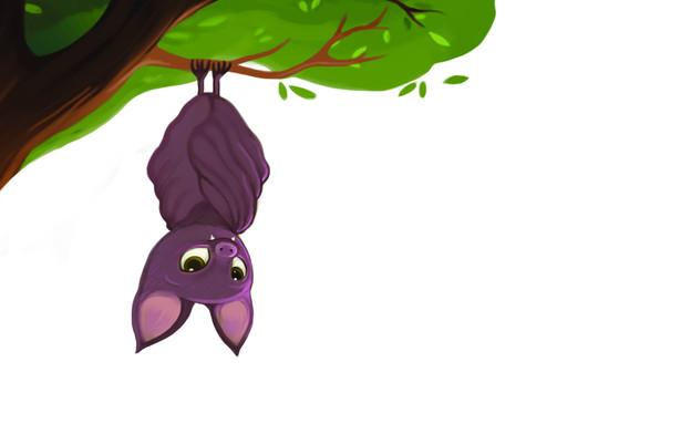 גלילאו העטלף (איור: טלי פלד)