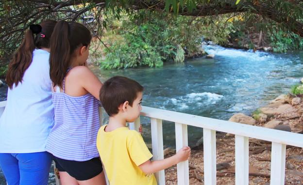 מה עושים עם הילדים בקיץ shutterstock_dnaveh