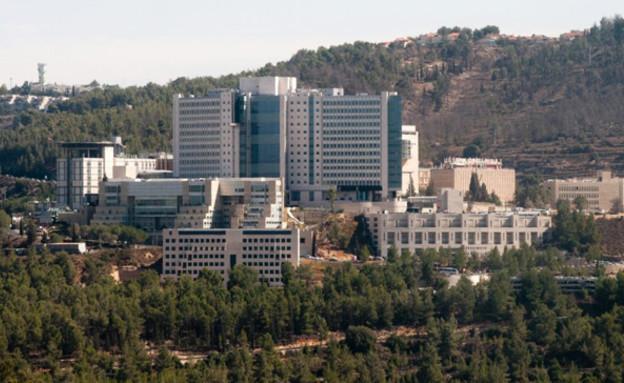 בית החולים הדסה עין כרם (צילום: אבי חיון, חדשות)