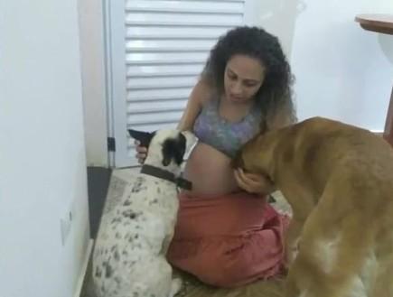 ברזיל: כלב המשפחה מחץ למוות תאומות בנות חודש – בגלל שקינא בהן