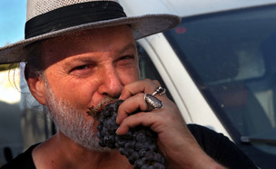 אבי פלדשטיין (צילום: דוד סילברמן)