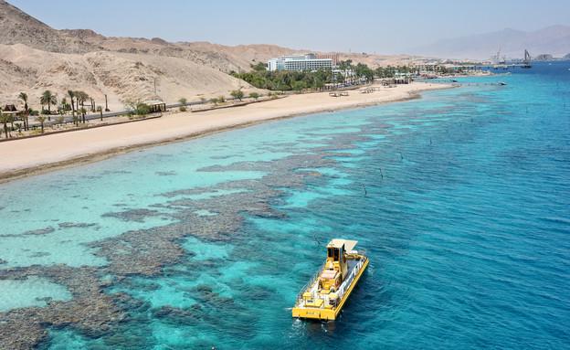 חוף האלמוגים באילת (צילום: vblinov, Shutterstock)