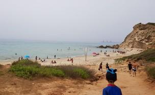 צוק בחוף (צילום: N12)