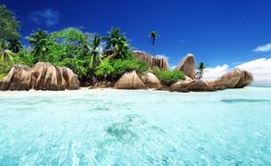 איי סיישל  (צילום:  ESB Professional | Shutterstock)