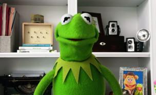 קרמיט, 2020 (צילום: יוטיוב - The Muppets)