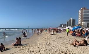חוף הים בתל אביב (צילום: N12)