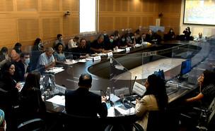 הוועדה המיוחדת לעניין נגיף הקורונה (צילום: ערוץ הכנסת)