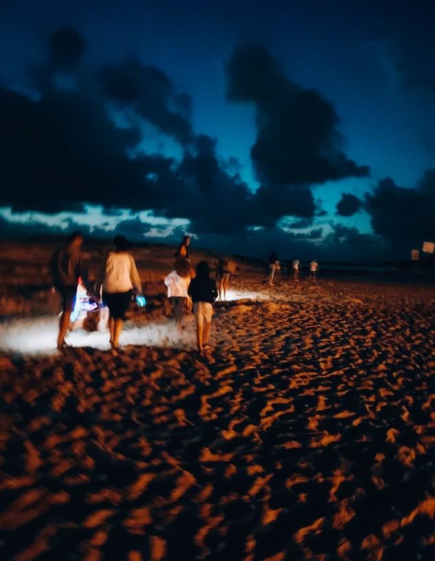 עששיות חוף דור (צילום: נילי מרגי)