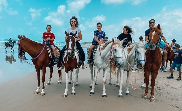 חוות סוסים דור (צילום: נילי מרגי)