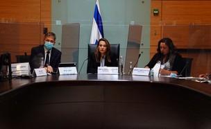 ועדת הקורונה בכנסת (צילום: דוברות הכנסת)