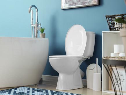 חדר רחצה, שירותים (צילום:  Pixel-Shot, Shutterstock)