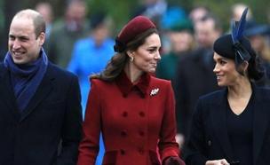 חיוכים מנסיך לנסיך (צילום: sky news, חדשות)