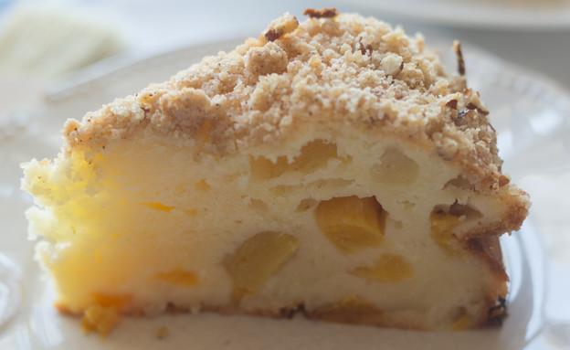 עוגת גבינה ופירות בחושה ומהירת הכנה (צילום: קרן אגם, אוכל טוב)