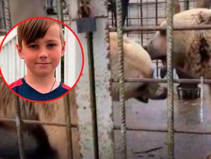 ילד נהרג אחרי שחדר לכלוב דובים והתגרה בהם