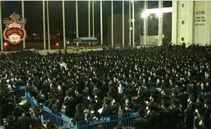 אלפי חסידי בעלזא בחופת נכד האדמו״ר בירושלים (צילום: יעקב מלמד, חדשות JDN)
