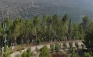 המלצה לשבת: היער הקהילתי של יוקנעם (צילום: גלית ויואב, קשת 12)