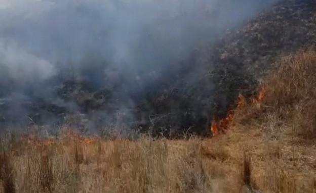 שרפה בבארי (צילום: רשות הטבע והגנים)