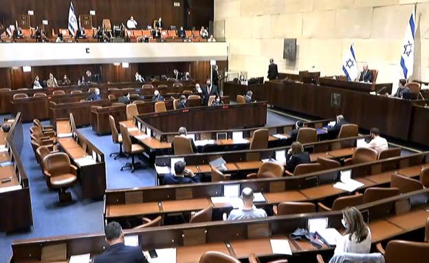 מליאת הכנסת  (צילום: ערוץ כנסת)