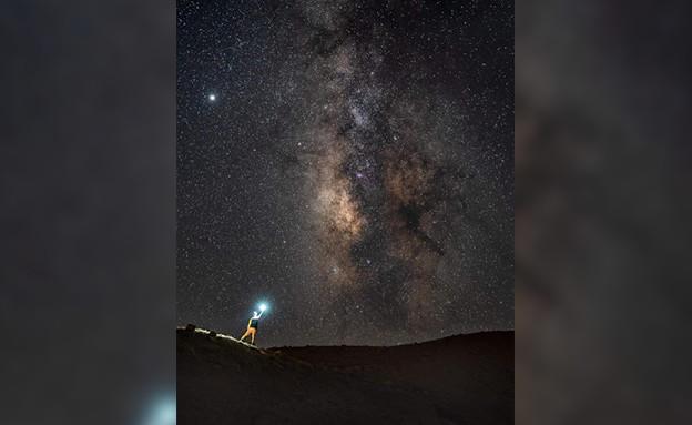 מטר כוכבים בשמי הארץ (צילום: אלון צנגוט)