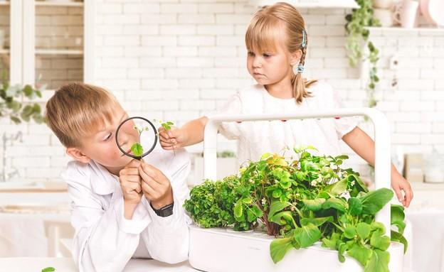 צרכנות אוגוסט, Smart garden- Click&Grow ברשת ביתילי. 798 שח (צילום: יחצ)