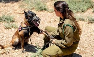 יחידת הכלבנים (צילום: נבו לוין, אתר חיל האוויר)