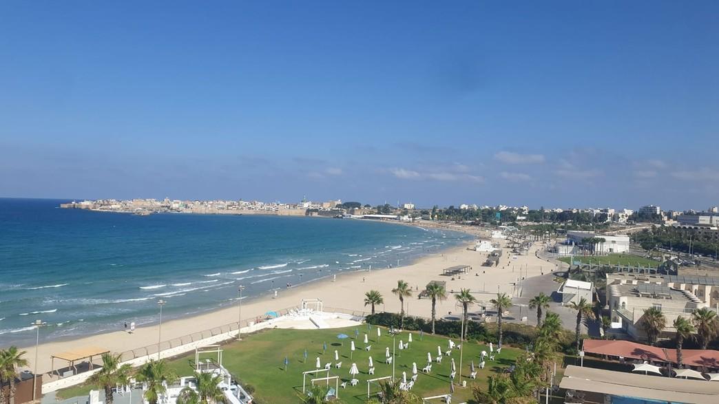 חוף התמרים (צילום: רעות עוזיאל)