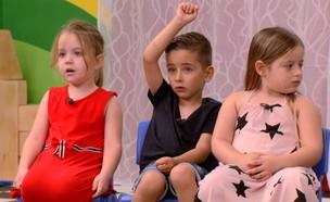 החיים הסודיים של בני ה- 4 (צילום: החדשות 12)