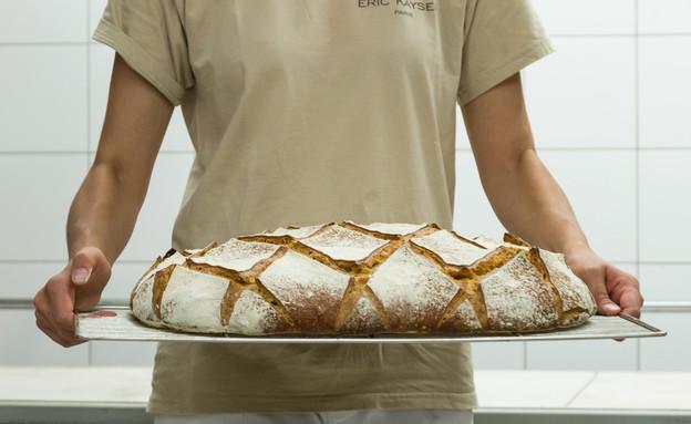 מייסון קייזר לחם מחמצת   (צילום: מסימו פסינה, יחסי ציבור)