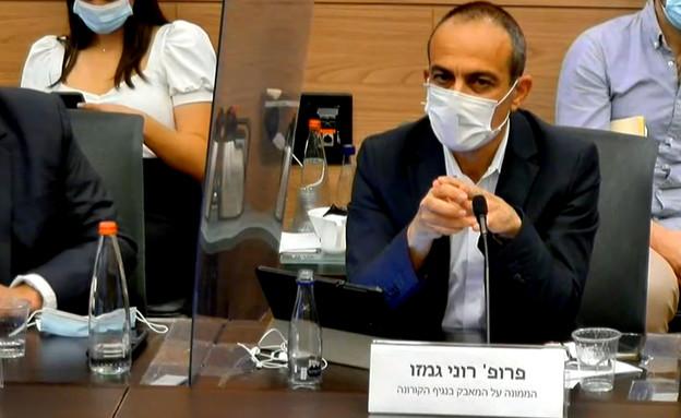 פרופ' רוני גמזו פרויקטור הקורונה בועדת חוקה (צילום: ערוץ הכנסת)