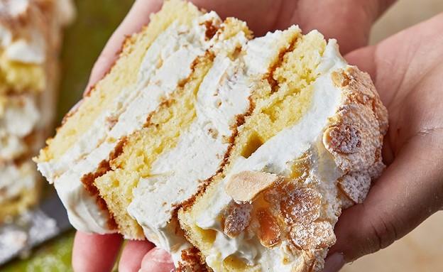 עוגת שכבות של קרין גורן - פרוסה (צילום: סופגי גואטה, מתוק בבית, הוצאת תכלת)