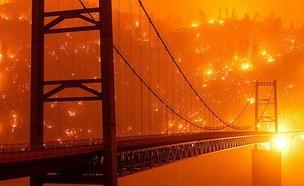 שריפת קריק (צילום: nssmagazine, instagram)