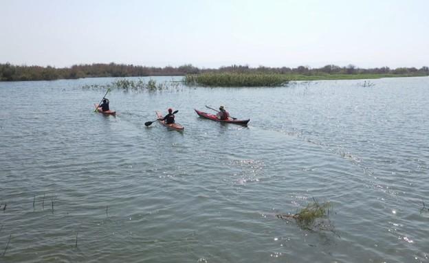 נהר הירדן (צילום: החדשות 12)