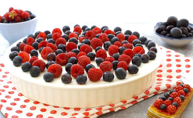 עוגת פירות יער ב-138 קלוריות (צילום: רויטל פדרבוש, אוכל טוב)