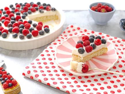עוגת פירות יער ב-138 קלוריות - פרוסה