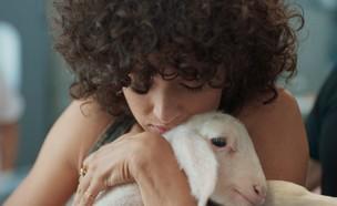 פרסומת לטבעונות של ויגן פרנדלי שודרה הערב לראשונה (צילום: ויגן פרנדלי)