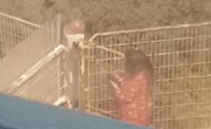 מלונית הקורונה באשקלון (צילום: אלון חן)
