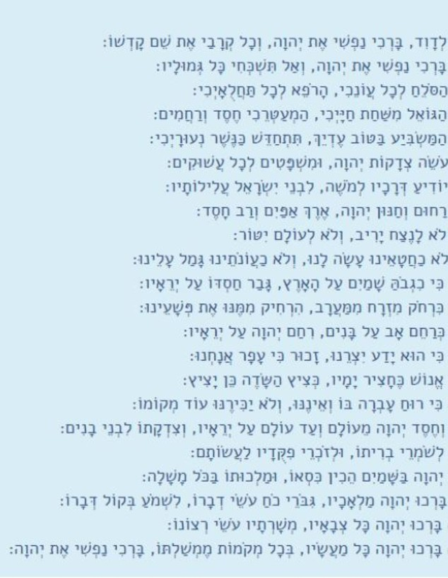 תפילה לרפואתו של יהודה ברקן (צילום: צילום מסך)