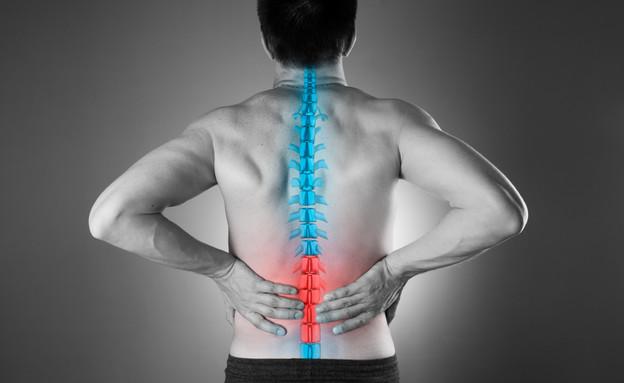 כאב גב (צילום: staras, shutterstock)
