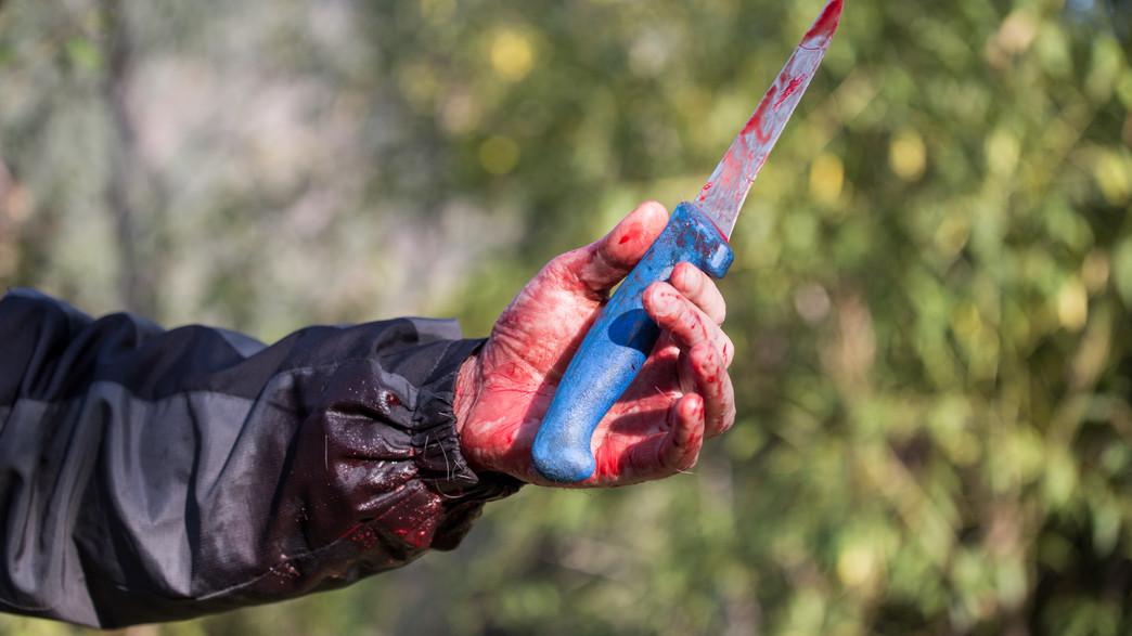 סכין מגואלת בדם (צילום: shutterstock   Hajrudin Hodzic)