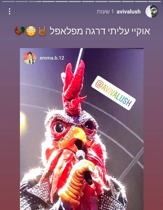 האם אביב אלוש הוא התרנגול? (צילום: מתוך עמוד האינסטגרם של אביב אלוש, instagram)